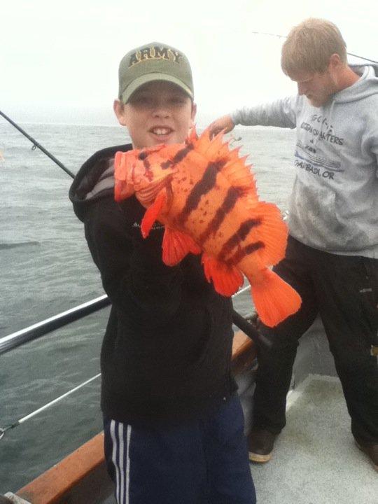 siggigrockfish
